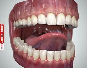 Teeth and Tongue Set 3D asset