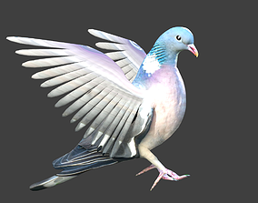 pigeon 3D animated