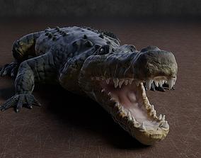 3D asset Low Poly Crocodile