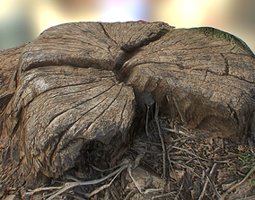 VR / AR ready Free Log 3D Model Tree Stump