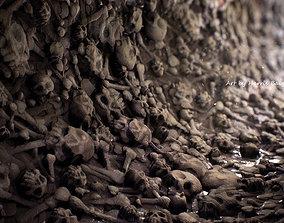 Skulls and Bones 3D realistic