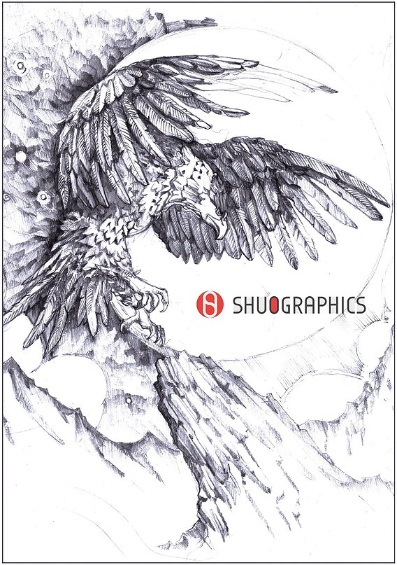 pencil sketch of a card with an eagle