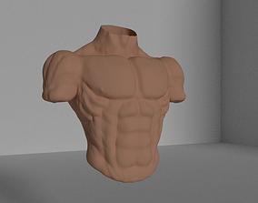 3D Bulk Torso