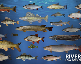 3D asset animated River fish