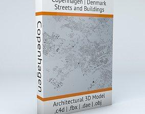 3D model Copenhagen Streets and Buildings