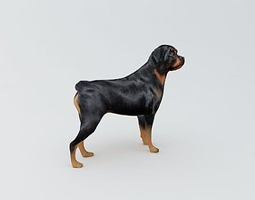 Rottweiler Dog 3D Printable Model