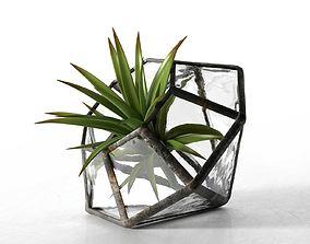 3D Terrarium Water Glass Diamond