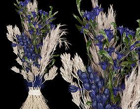 Collection plant vol 74 amaranth 3D model