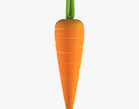 plant 3D asset Carrot