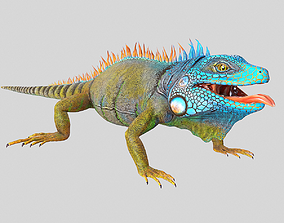 3D model American Iguana