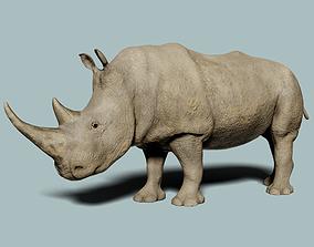 White Rhinoceros 3D animated