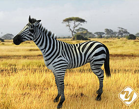 animated realtime Animated Zebra for 3ds Max