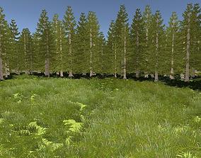 Foliage 3D model