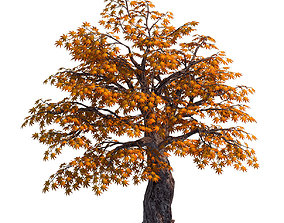 3D model Qixiashan - tree