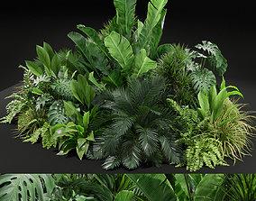 3D Plants collection 445