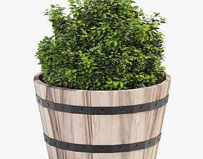 Hardwood Round Planter 46 3D model