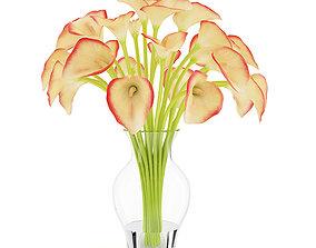 3D model Calla Lilies in Vase