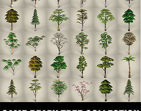 3D asset Game Ready Tree Collection