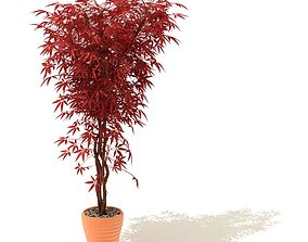 Red Potted Plant 3D