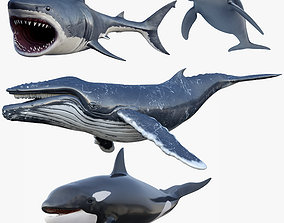 Set of Sea Animals Animated 8K 3D model