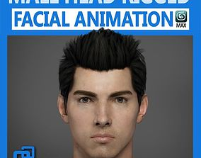 3D Adult Male Head Rigged