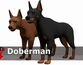 Doberman 3D model animated
