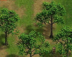 3D Plant - Tree 16