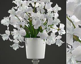 3D model bouquet of white flowers