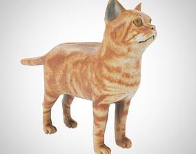 3D asset Low Poly Cat