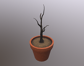 3D model Dried Plant in a Pot