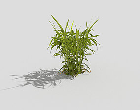 Low poly Plant 3D asset VR / AR ready hedge