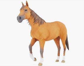 3D model PBR Horse Rigged 02