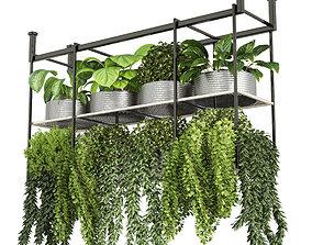 collection Indoor plants hanging pot-metal bax 3D model 1
