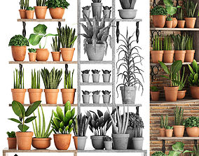 collection of plants in clay pots PART 1 3D model