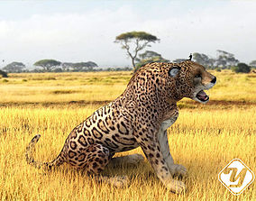 animated game-ready Animated Leopard 3D model for 3ds Max
