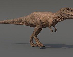 3D model animated VR / AR ready Tyrannosaurus Rex