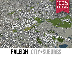 3D model Raleigh - city and surroundings