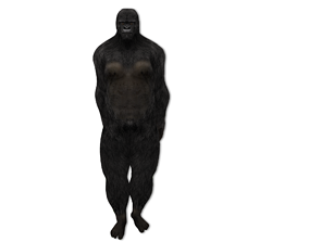 3D asset low-poly Human Rigged Gorilla Avatar Character