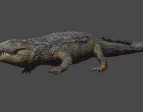 3D model Aligator