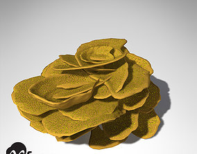 3D XfrogPlants Yellow Scroll Coral
