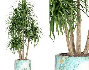 3D Plants collection 287