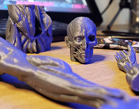 3D print model Ecorche