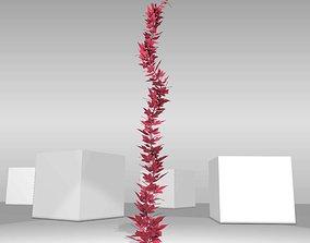 3D asset Wild Wine Vine - Parthenocissus - Autumn 2