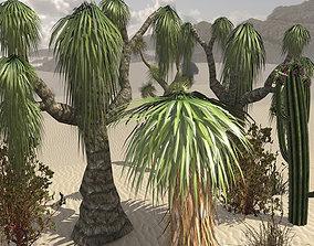 3D model Desert Vegetation Pack
