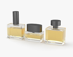 Perfume Bottle 3D various