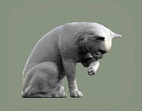kitten Cat for 3d printing 3D print model