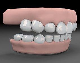 Human Teeths 3D model