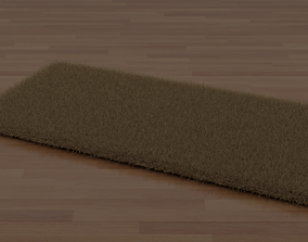 Brown Shag Rug 3D model