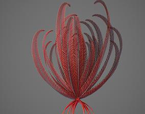 Crinoid 3D model