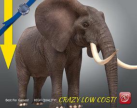 3D model Elephant maleA T-pose